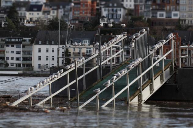 Hochwasser-Koblenz-Rhein
