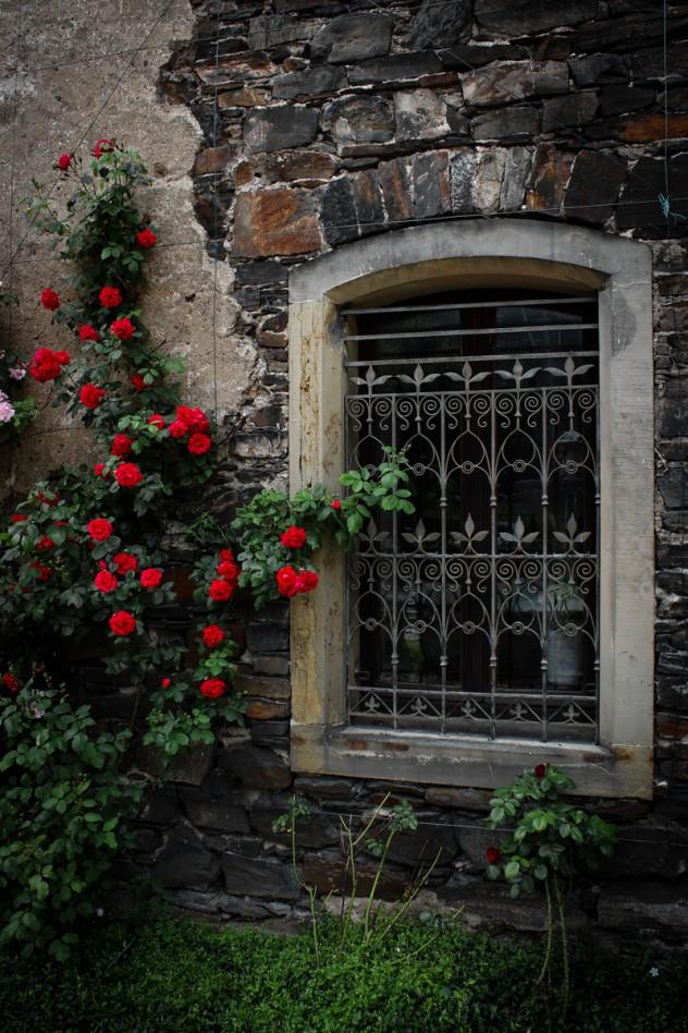 Fensterdetail Schloß Liebieg